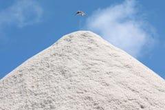 Pila de la sal Imagen de archivo