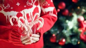 Pila de la tenencia de la muchacha de bastones de caramelo de hierbabuena Día de fiesta de la Navidad Fotografía de archivo