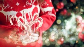 Pila de la tenencia de la muchacha de bastones de caramelo de hierbabuena Día de fiesta de la Navidad Imagen de archivo libre de regalías