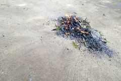 Pila de las hojas del barrido y de las hojas de la quemadura Fotos de archivo