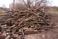 Pila de leña Preparación para el invierno en el pueblo Fotos de archivo libres de regalías