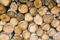 Pila de leña seca del abedul Fotografía de archivo libre de regalías