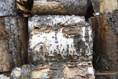 Pila de leña vieja del abedul y del álamo temblón, fondo de la leña, Imagen de archivo libre de regalías