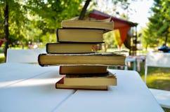 Pila de libro en el parque Fotografía de archivo