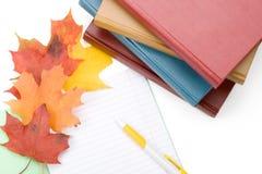 Pila de libros, de escritura-libro, de pluma y de hojas de otoño Imagen de archivo