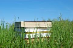 Pila de libros en hierba verde fotos de archivo