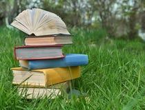 Pila de libros en la hierba foto de archivo libre de regalías