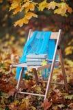 Pila de libros olvidados en una silla en parque Fotos de archivo