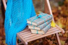 Pila de libros olvidados en una silla en parque Fotografía de archivo libre de regalías