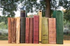 pila de libros sobre el fondo natural fotografía de archivo libre de regalías