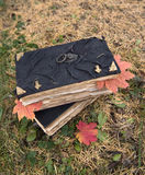 Pila de libros viejos con las hojas de arce Foto de archivo libre de regalías