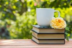 Pila de libros y de taza blanca de té en un fondo natural verde Fotografía de archivo