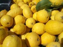 Pila de limones Imagen de archivo libre de regalías