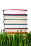 Pila de los libros en la hierba imagen de archivo libre de regalías