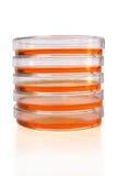Pila de los platos de Petri Fotografía de archivo