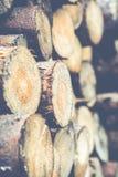 Pila de madera Imágenes de archivo libres de regalías