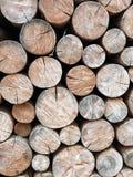 Pila de madera de construcción en bosque del pino Imagen de archivo