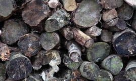 Pila de madera de registros Imágenes de archivo libres de regalías