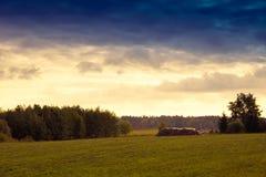 Pila de madera en el prado Imagen de archivo