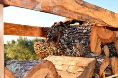 Pila de madera en jardín Corte los registros y la madera del fuego para el invierno fotografía de archivo