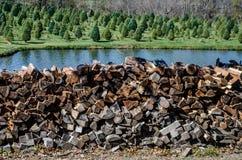 Pila de madera que se prepara para el invierno Fotos de archivo libres de regalías