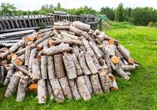 Pila de madera, tajada abajo de árboles en el bosque en verano Foto de archivo