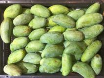 Pila de mangos verdes Foto de archivo libre de regalías