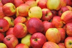 Pila de manzanas Fotografía de archivo libre de regalías