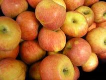 Pila de manzanas maduras Fotografía de archivo