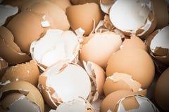 Pila de modelo vacío marrón quebrado de muchas cáscaras de huevo Imágenes de archivo libres de regalías