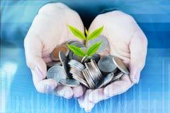 Pila de monedas en la mano de la mujer de negocios, fondo financiero Foto de archivo libre de regalías