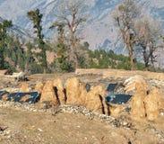 Pila de paja del arroz en la cuesta de montaña Foto de archivo libre de regalías