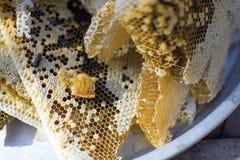 Pila de panales frescos de la cera con la miel en la placa Imágenes de archivo libres de regalías