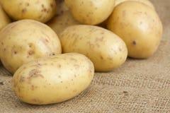 Pila de patatas en la arpillera fotografía de archivo libre de regalías