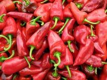 Pila de pimientas rojas Imagen de archivo libre de regalías