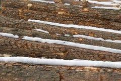 Pila de registros de la madera de pino de a un lado Fotos de archivo