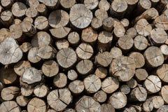 Pila de registros de madera Imágenes de archivo libres de regalías
