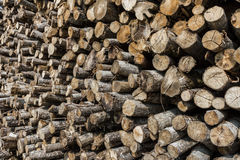 Pila de registros de madera Imagen de archivo