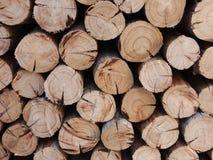 Pila de registros de madera, acción de madera del fuego para el uso del fondo Fotos de archivo libres de regalías