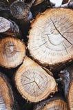 Pila de registros de madera, fondo abstracto de madera vertical imagen de archivo