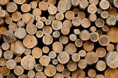Pila de registros de madera Sitio de registración del bosque Troncos de árbol derribados Fotos de archivo