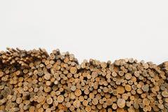 Pila de registros de madera Sitio de registración del bosque Troncos de árbol derribados Foto de archivo