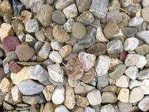 Pila de roca del río Imagenes de archivo