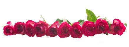 Pila de rosas rosadas Imagen de archivo