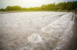 pila de sal cruda en el campo de la sal sale la agricultura antes de proceso de la saturación del ssalt en fábrica fotos de archivo