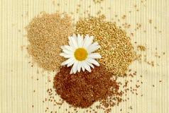 Pila de semillas de cereal, gachas de avena en un fondo ligero, avena, lino, alforfón, alforfón verde, superfoods, comida sana, v fotos de archivo