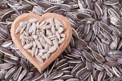 Pila de semillas de girasol en fondo de madera Imagen de archivo libre de regalías