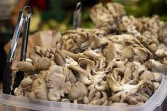 Pila de setas de ostra en la exhibición en el mercado fotos de archivo