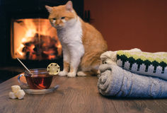 Pila de suéteres y de taza hechos punto acogedores de té caliente con el limón encendido Imagen de archivo libre de regalías