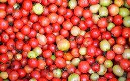 Pila de tomates fotografía de archivo libre de regalías